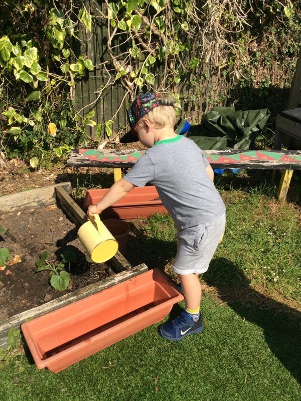 watering outside preschool